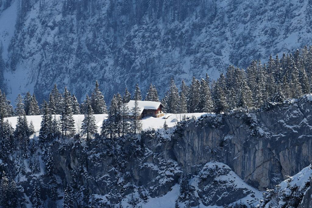 Alpsitzgebiet-09032016-478-DxO.jpg