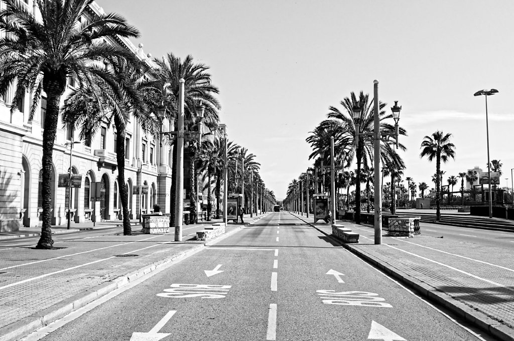 Barcelona-17042017-072-Brey-Photography-Filter.jpg